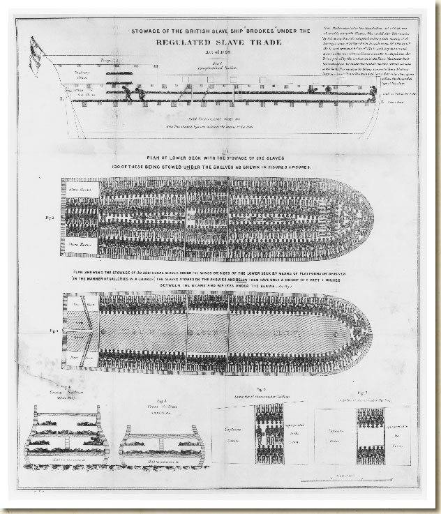 Stowage of the British Slave Ship Brookes, 1790