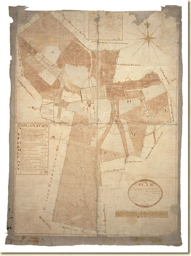 Ophir Plantation Map, Henry F. Porcher v. Kate Porcher, et. al.1816