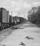 Railroad cars at Dachau concentration camp, 1945 (Detail)