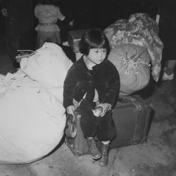 Young Evacuee of Japanese Ancestry