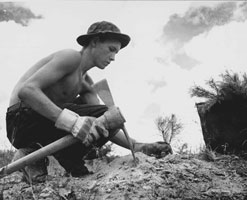 Photograph of Civilian Conservation Corps Enrollee Planting a Tree
