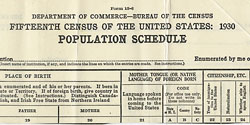 1930 census form section