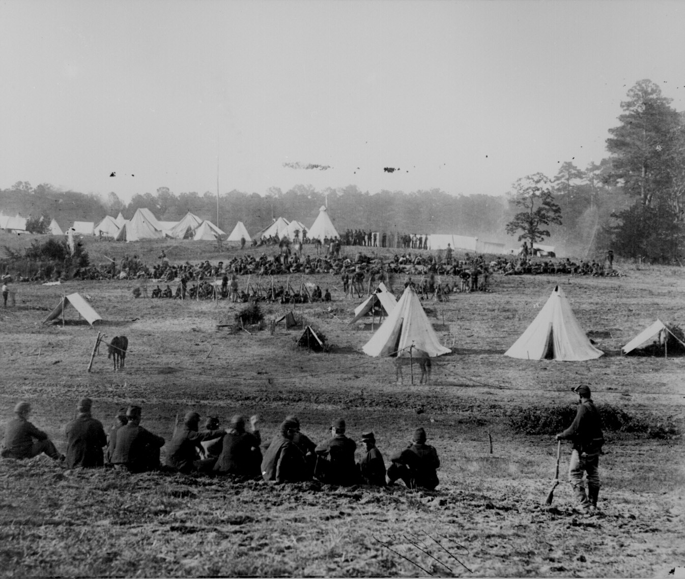 69. confederate prisoners captured in the shenandoah valleybeing
