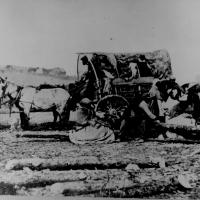 12. A black family entering Union lines with a loaded cart.