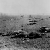 99. Union and Confederate dead, Gettysburg Battlefield, Pa., July 1863.